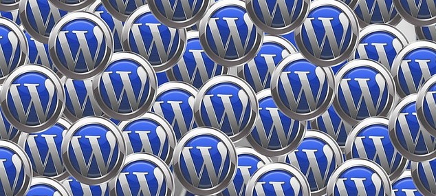 How to Choose a Right WordPress Theme?