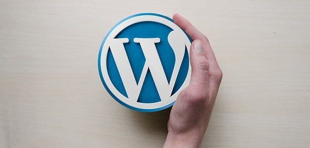 How To Boost Image Load Time on Your WordPress Website
