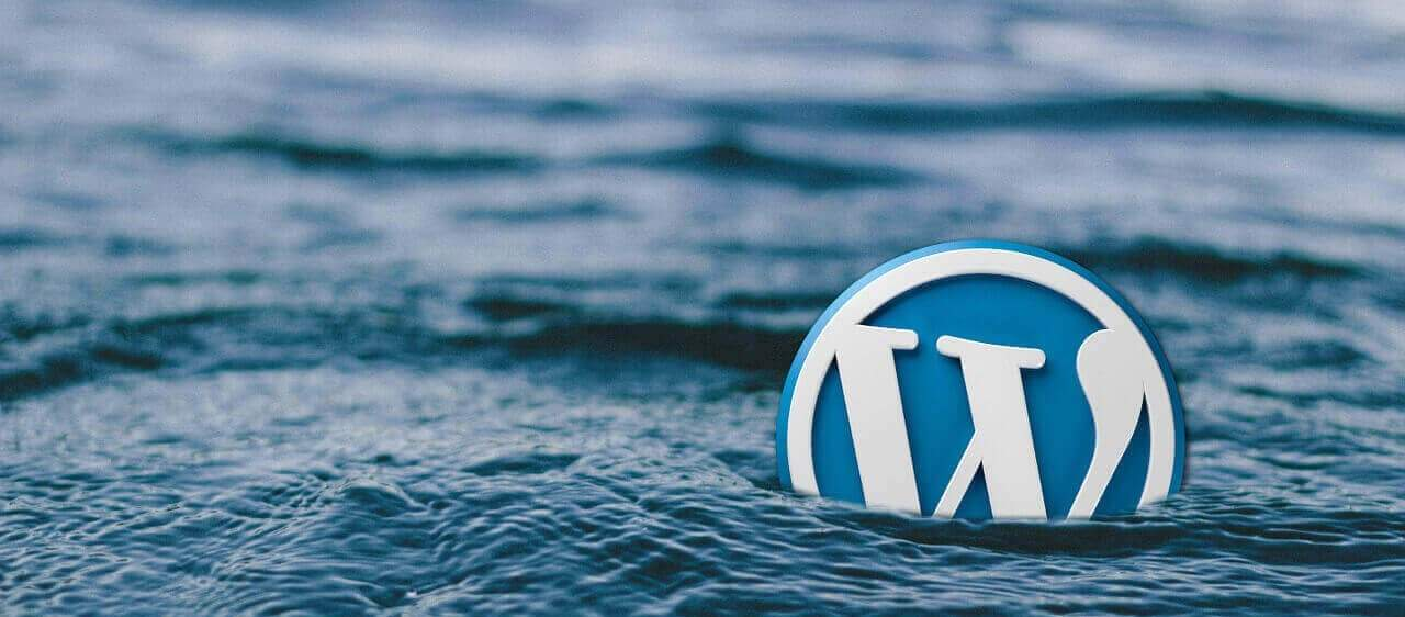Some Basic Steps For Securing wp-admin Directory of a WordPress Website